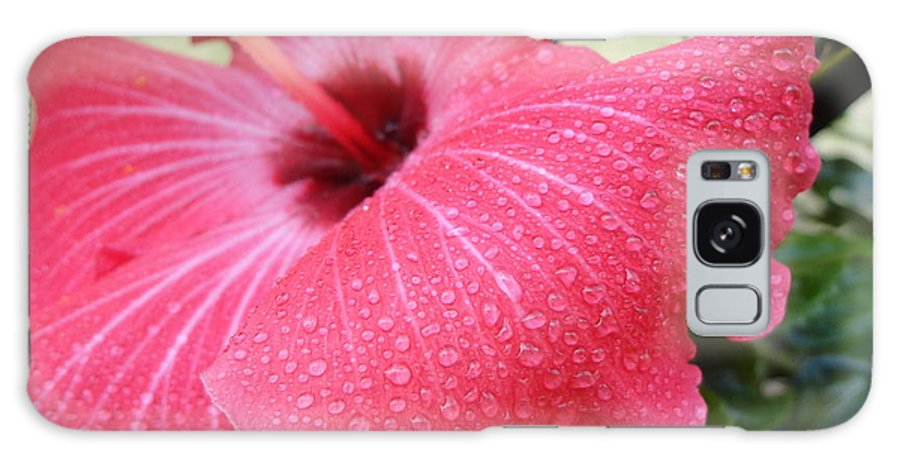 Hibiscus Galaxy S8 Case featuring the photograph Berry Sprinkle by Maria Bonnier-Perez