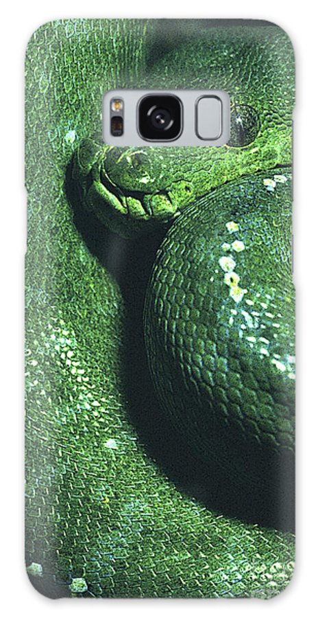 Snake Galaxy S8 Case featuring the photograph Big Green Eating Machine by Paul W Faust - Impressions of Light