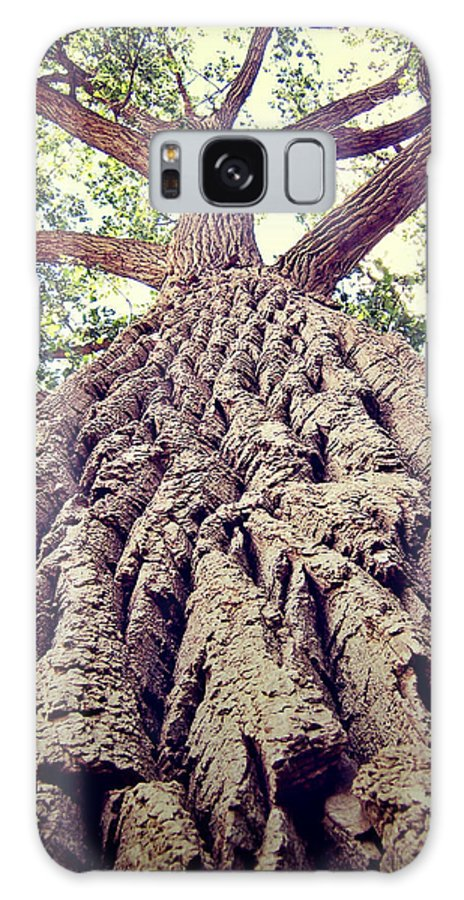 Photo Galaxy S8 Case featuring the photograph Big Tree Bark by Phil Perkins
