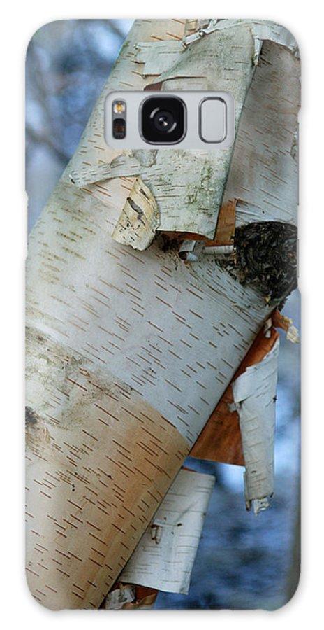 Birch Galaxy S8 Case featuring the photograph Birch Bark Study No.1 by Janice Adomeit