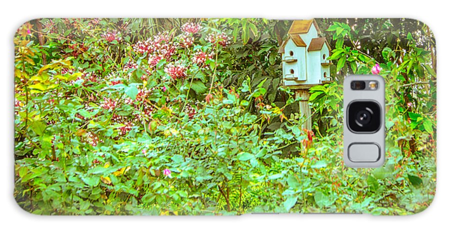 Bird House Galaxy S8 Case featuring the photograph Bird House by Shirley Tinkham