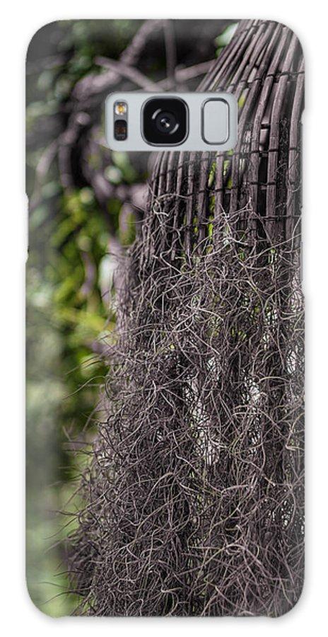Bird Galaxy S8 Case featuring the photograph Bird Nest Tree by Fiesta Photography