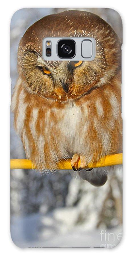 Owl Galaxy S8 Case featuring the photograph Bird On A Wire by Rick Monyahan