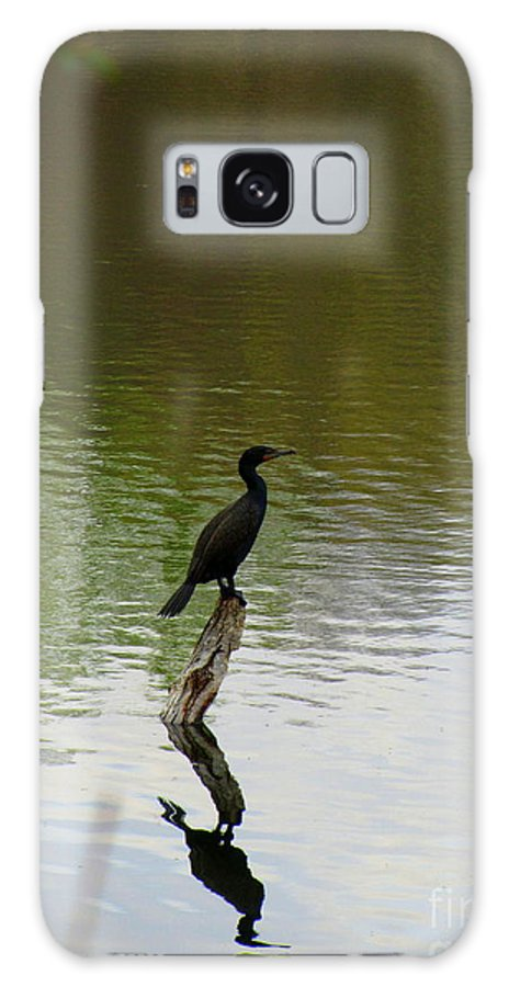 Bird Galaxy S8 Case featuring the photograph Bird On The Lake by Avis Noelle