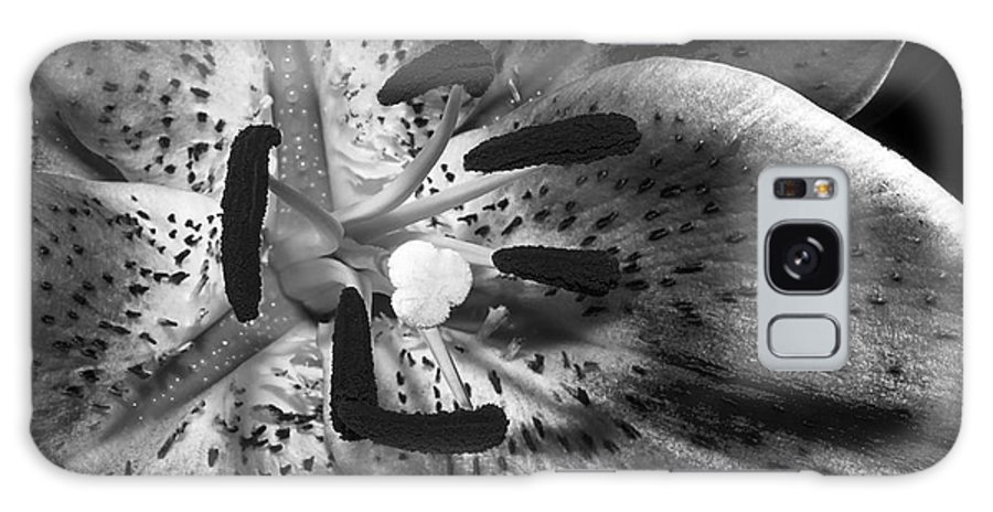 Lily Galaxy S8 Case featuring the photograph Black And White Lily Up Close by Phyllis Denton