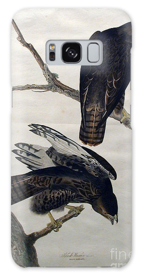 Louisiana Heron Galaxy Case featuring the drawing Black Warrior by Celestial Images