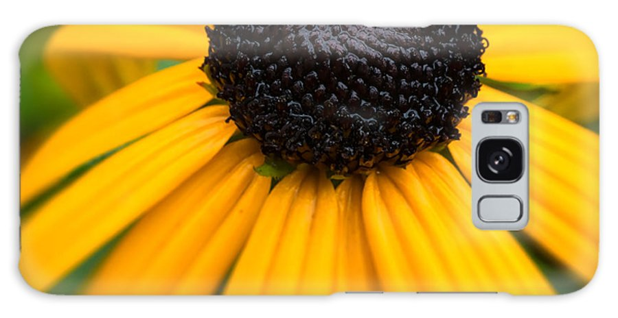 Flower Galaxy S8 Case featuring the photograph Blackeyed Susan by David Kay