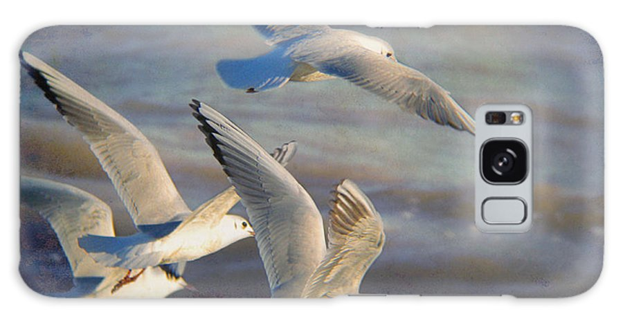 Seagulls Galaxy S8 Case featuring the photograph Black.headed Seagulls In Flight by Perry Van Munster
