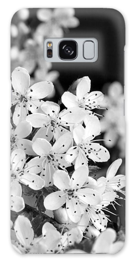 Black Galaxy S8 Case featuring the photograph Blossom In Black And White by Robert Camp