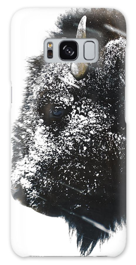 Buffalo Galaxy S8 Case featuring the photograph Blowing Snow by J L Woody Wooden
