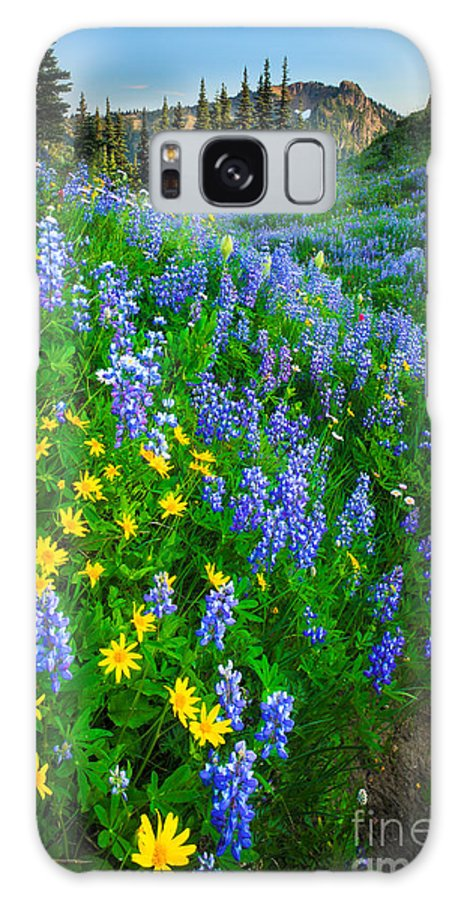 America Galaxy S8 Case featuring the photograph Blue And Yellow Hillside by Inge Johnsson