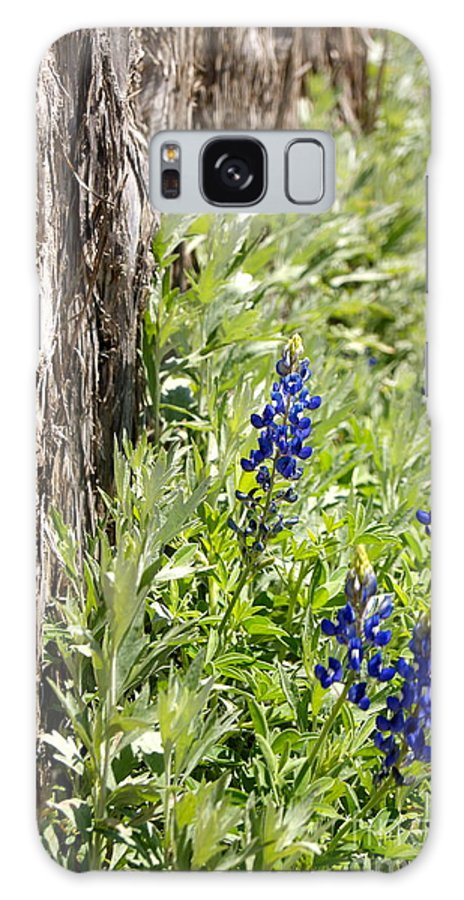 Galaxy S8 Case featuring the photograph Blue Flowers by Elizabeth-Anne King