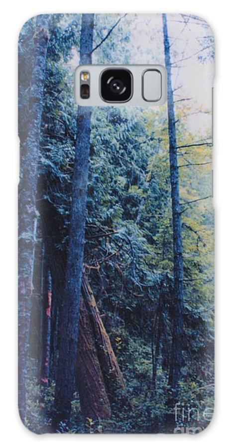 First Star Galaxy S8 Case featuring the photograph Blue Forest By Jrr by First Star Art