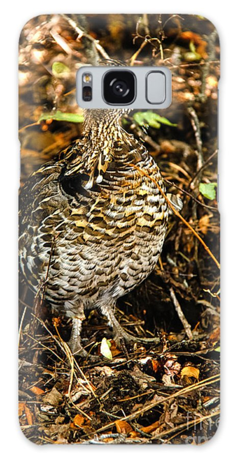 Grouse Galaxy S8 Case featuring the photograph Blue Grouse by Robert Bales