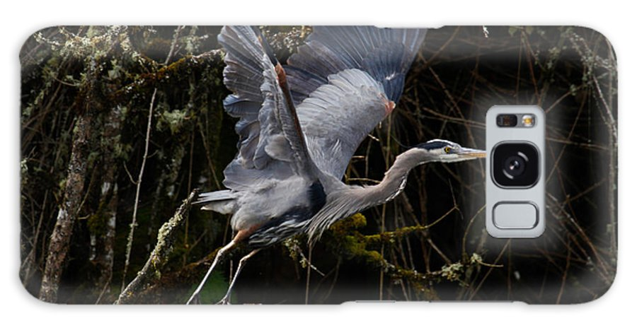 Blue Heron Galaxy S8 Case featuring the photograph Blue Heron Lift Off by Steve McKinzie