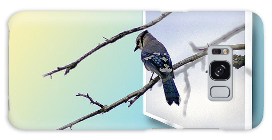 2d Galaxy S8 Case featuring the photograph Blue Jay Branch by Brian Wallace