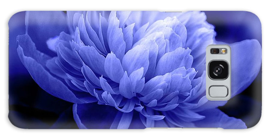Flowers Galaxy S8 Case featuring the photograph Blue Peony by Sandy Keeton