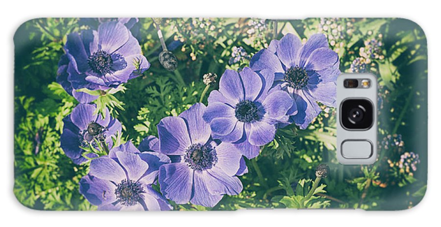 Anemone Galaxy S8 Case featuring the photograph Blue Poppies Blooms by Zina Zinchik
