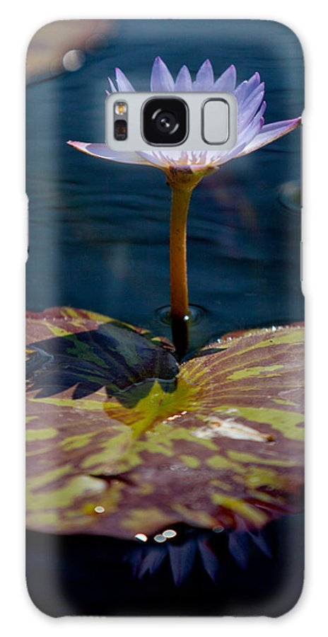 Water Lily Galaxy S8 Case featuring the photograph Blue Water Lily by Art Block Collections