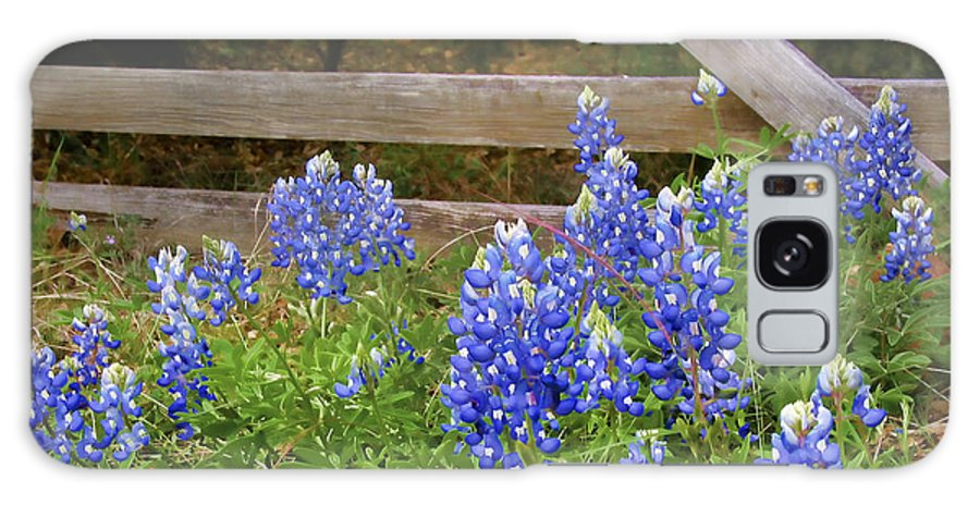 Bloom Galaxy S8 Case featuring the photograph Bluebonnet Gate by David and Carol Kelly