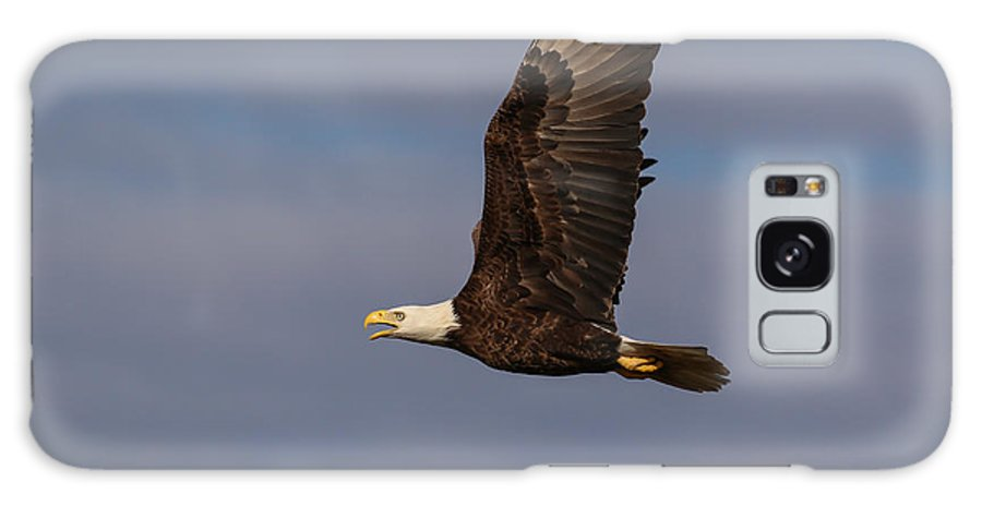 Bald Eagle Galaxy S8 Case featuring the photograph Bluish Purple 3 by Jeremy Helwig