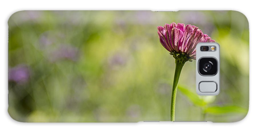 Flower Galaxy S8 Case featuring the photograph Bokeh Background by Irene Theriau