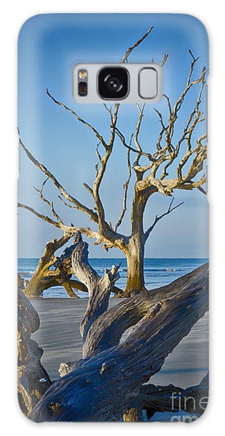 Bull Island Galaxy S8 Case featuring the photograph Boneyard Beach 3 by Carrie Cranwill