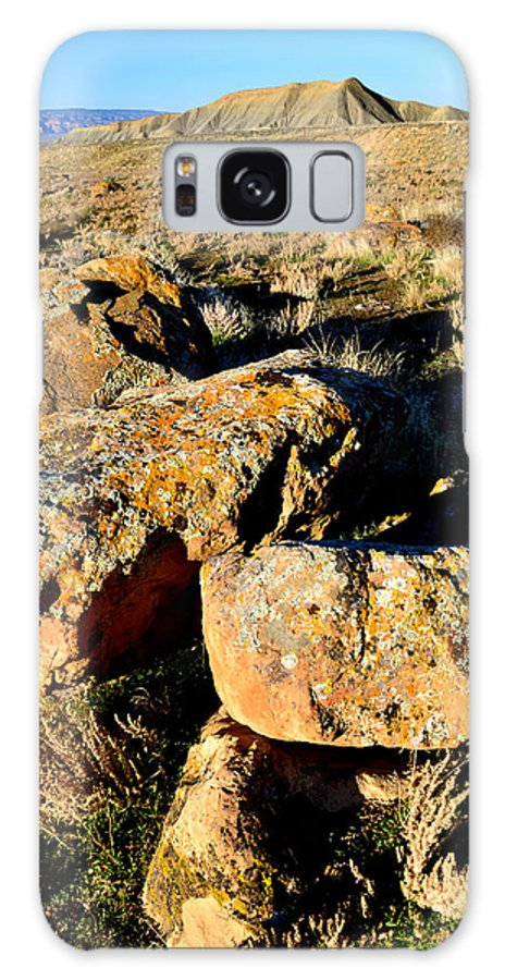 Bookcliffs Galaxy S8 Case featuring the photograph Bookcliffs 138 by Ray Mathis