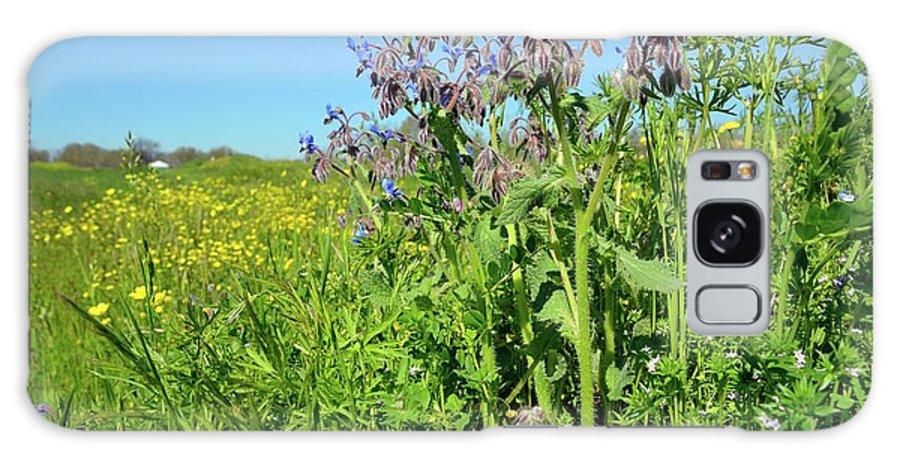 Starflower Galaxy S8 Case featuring the photograph Borage (borago Officinalis) Flowers by Bruno Petriglia