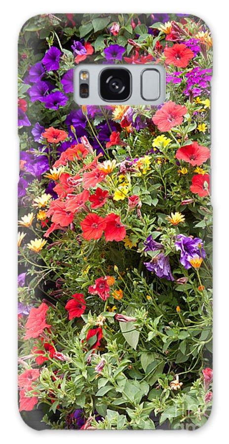 Mixed Color Bouquet Galaxy S8 Case featuring the photograph Breckenridge Bouquet by Carol Barrington