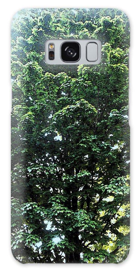 Tree Galaxy S8 Case featuring the digital art Bree by Machiko Studio