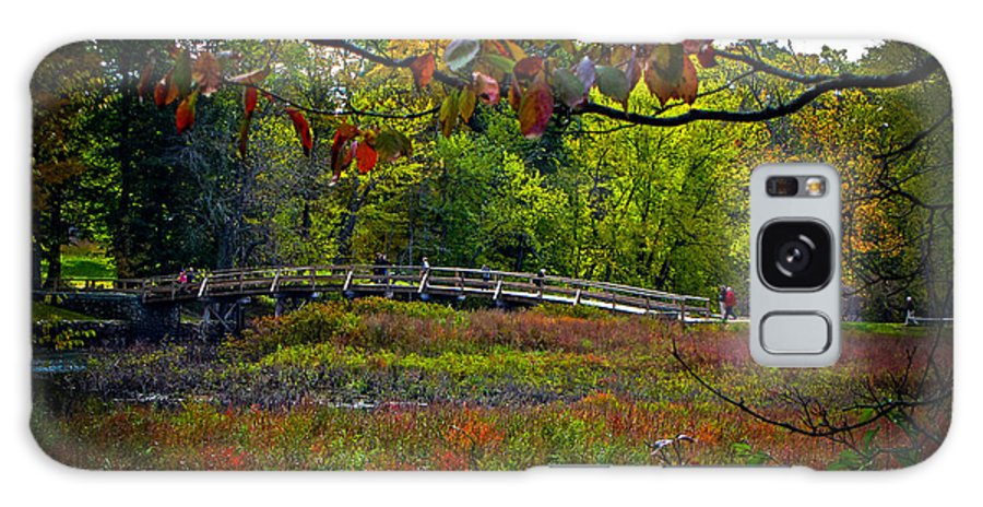 Fall Galaxy S8 Case featuring the photograph Bridge In Massachusetts Park by Charlene Gauld