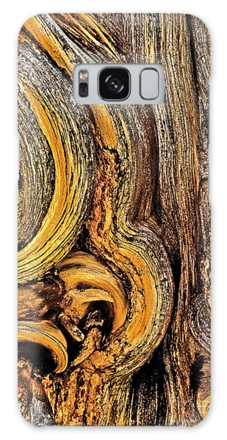 Bristlecone Pine Galaxy S8 Case featuring the photograph Bristlecone Pine Bark Detail White Mountains Ca by Dave Welling