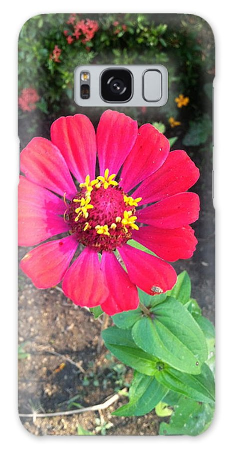Flower Galaxy S8 Case featuring the photograph Brite Pedals by William Hallett