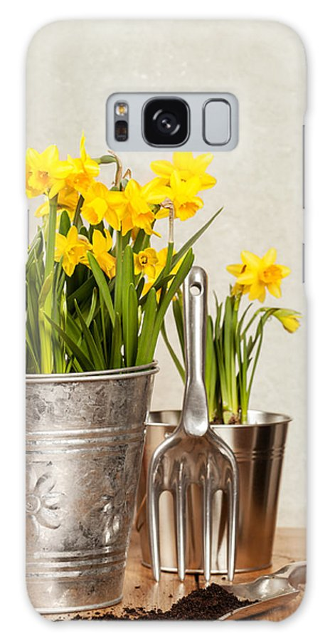 Spring Galaxy S8 Case featuring the photograph Buckets Of Daffodils by Amanda Elwell