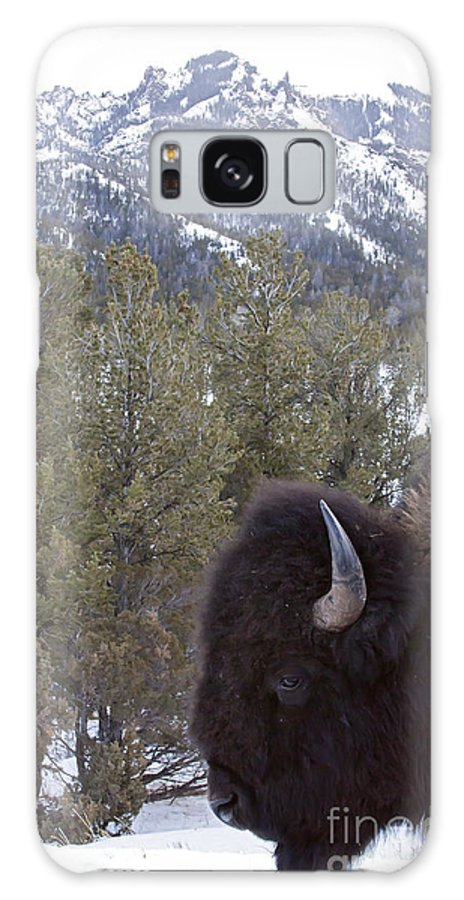 Buffalo Galaxy S8 Case featuring the photograph Buffalo In The Mountain  #4169 by J L Woody Wooden