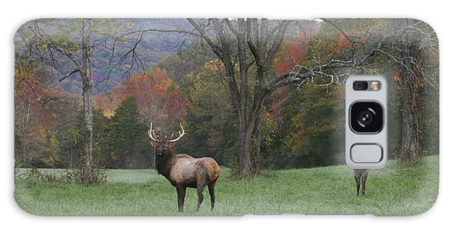 Bull Elk Galaxy S8 Case featuring the photograph Bulls Of Fall by Robert Camp