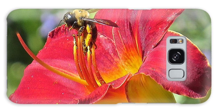 Bumble Bee Galaxy S8 Case featuring the photograph Bumble Bee In Day Lily 109 by Patsy Pratt
