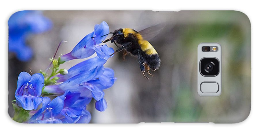 Horizontal Galaxy S8 Case featuring the photograph Bumble Blue - Casper Mountain - Casper Wyoming by Diane Mintle