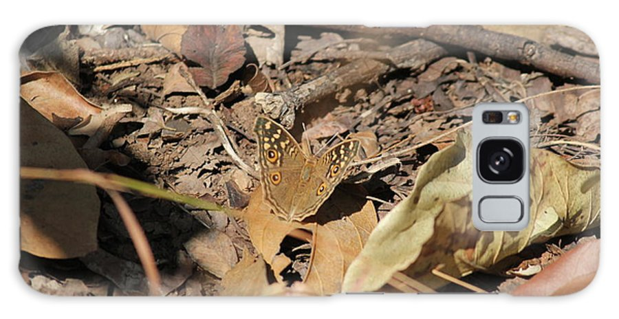 Nature Galaxy S8 Case featuring the photograph Butterfly Beauty by Four Hands Art
