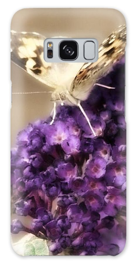 Butterfly Galaxy S8 Case featuring the photograph Butterfly Bush Butterfly by Judith Butler