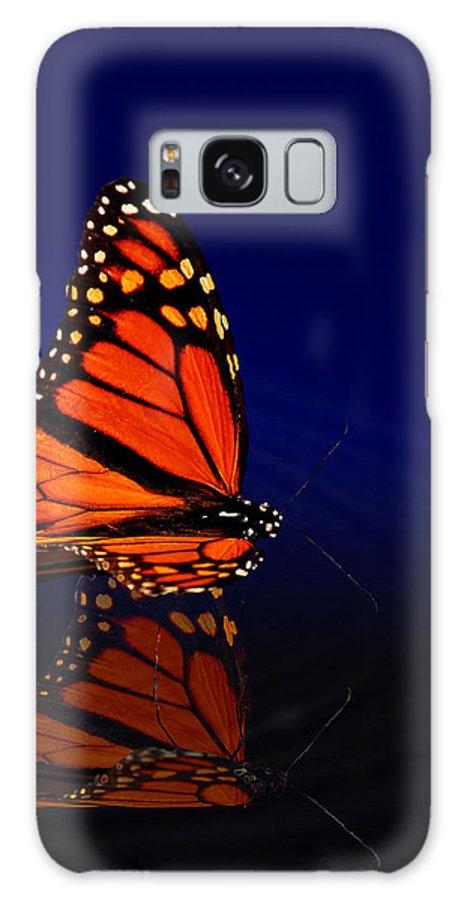 Butterfly Galaxy S8 Case featuring the photograph Butterfly Floats by Robert Schwarztrauber