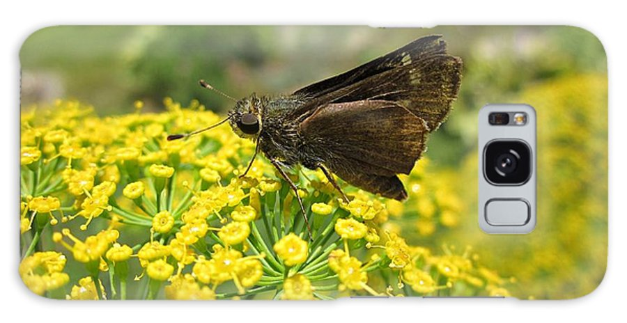 Skipper Galaxy S8 Case featuring the photograph Butterfly On Dill Flowers by MTBobbins Photography