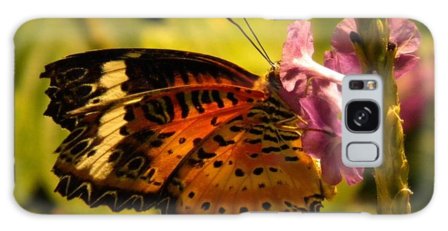 Butterfly Galaxy S8 Case featuring the photograph Butterfly With Flower by Joan Gal-Peck