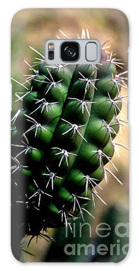 Sahuaro Galaxy S8 Case featuring the photograph Cactus Arm by Kathy McClure