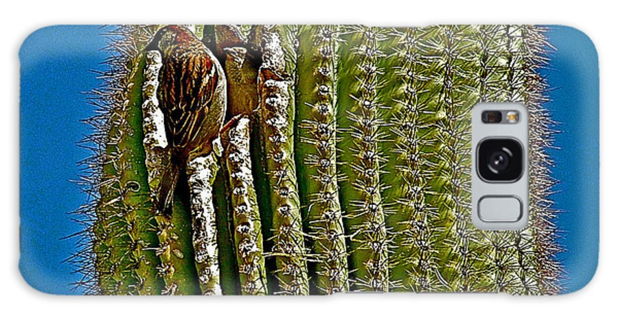 Cactus Wren With Offspring Galaxy S8 Case featuring the photograph Cactus Wren With Offspring In A Saguaro Cactus In Tucson Sonoran Desert Museum-arizona by Ruth Hager