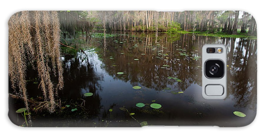 Bald Cypress Galaxy S8 Case featuring the photograph Caddo Lake, Texas's Largest Natural Lake by Larry Ditto