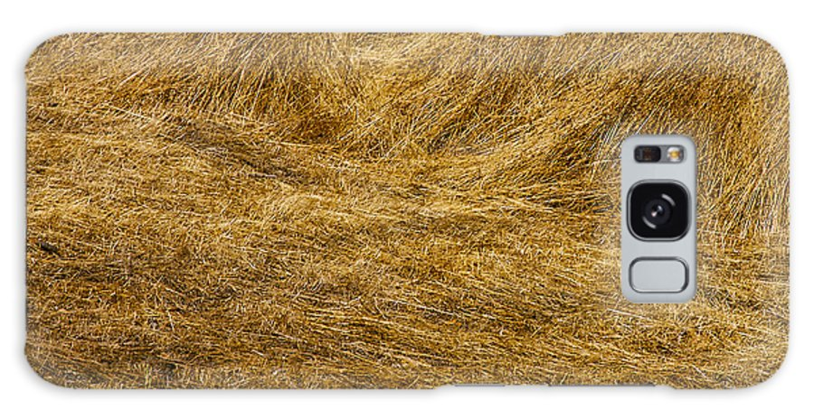 Napa Valley California Grass Golden Grasses Texture Textures Gold Galaxy S8 Case featuring the photograph California Gold by Bob Phillips