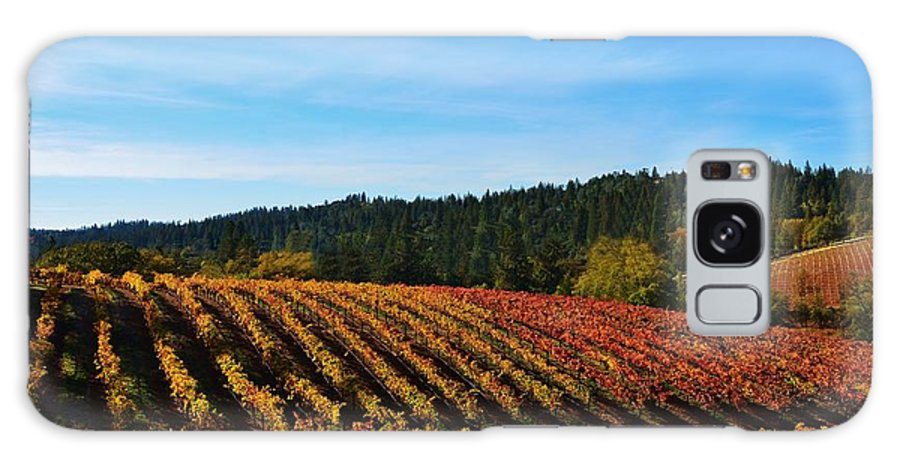 Wine Grape Vines Galaxy S8 Case featuring the photograph California Winery Apple Hill by Marilyn MacCrakin