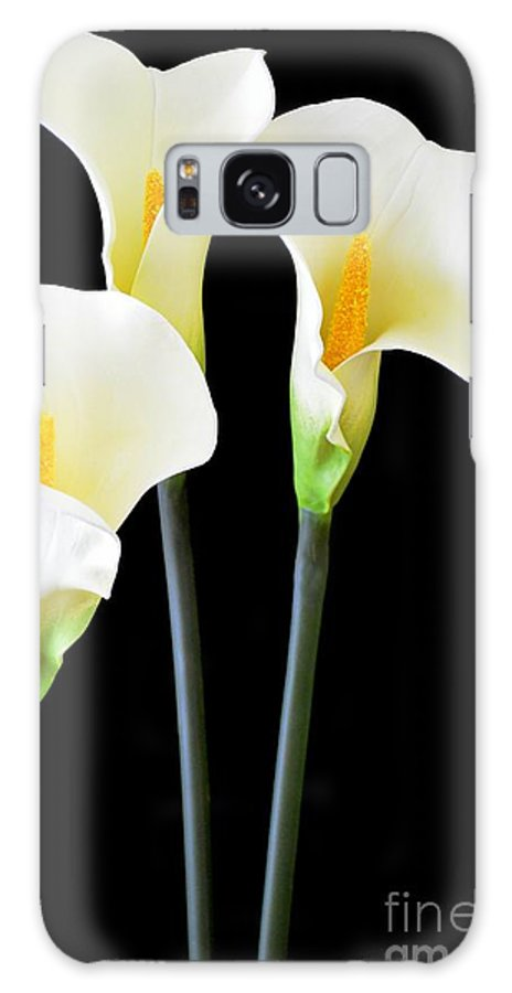 Calla Lily Galaxy S8 Case featuring the photograph Calla Lilies In Triplicate by Mary Deal